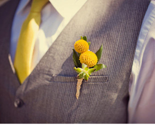 Billy Buttonhole