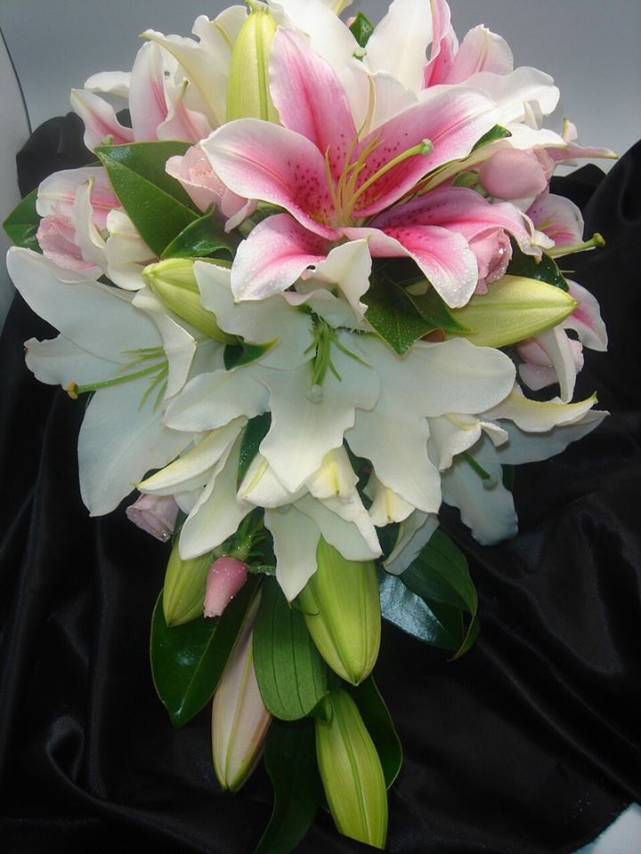 Lily Wedding White Pink